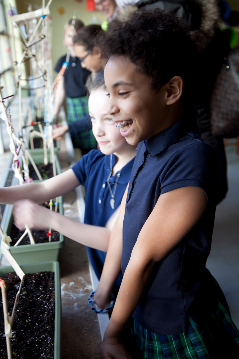 i2 Learning Vertical Farming: Grades 4 & 5 Invent and Inspire